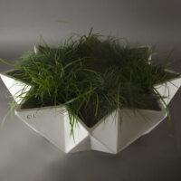 faceted low bowl planter in white fibre concrete