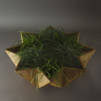 star shaped modern planter design 1 metre wide