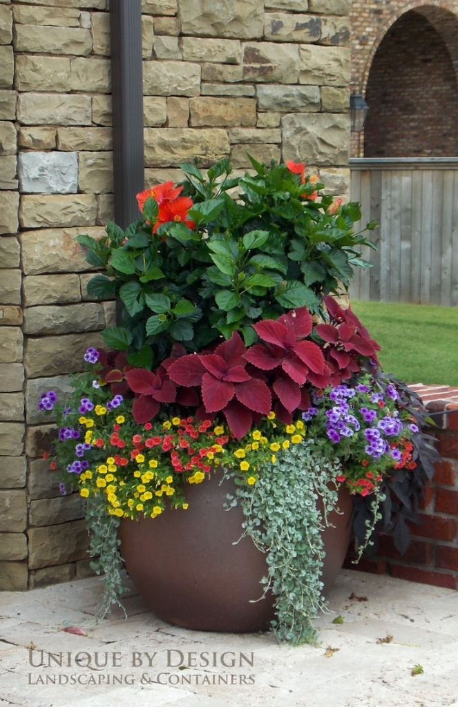 Flower pot outside crammed with flowers