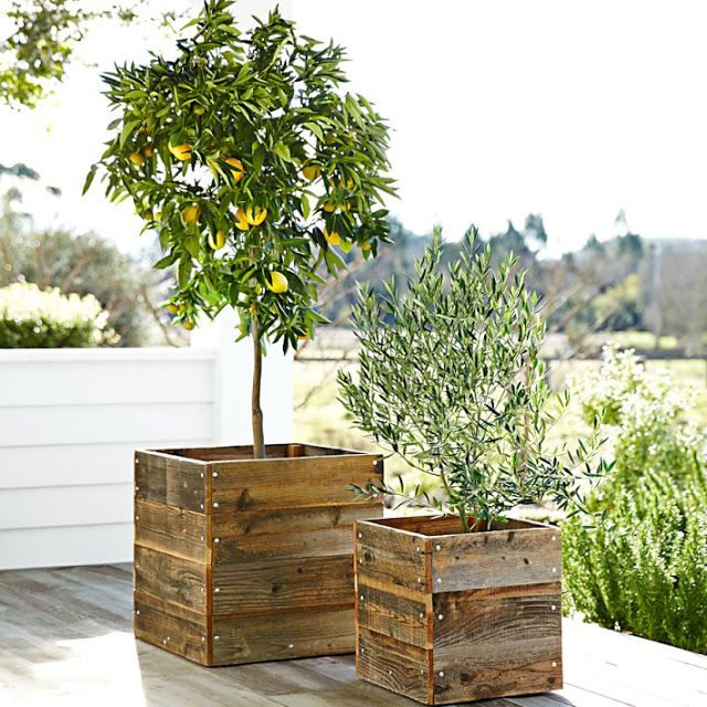 rustic wooden box flower pots