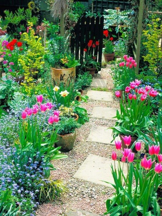 small pots line garden path