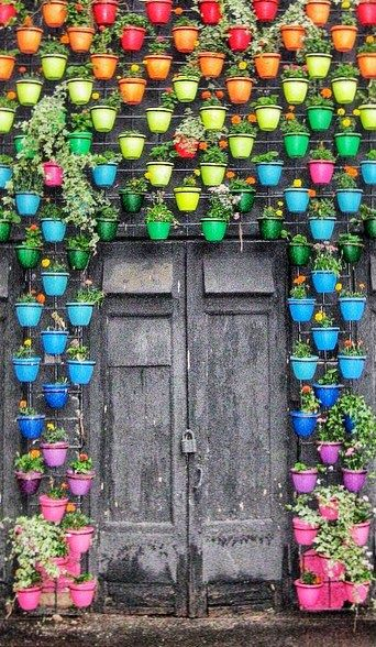 whacky colourful doorway pots