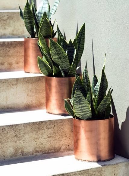 copper pots on steps