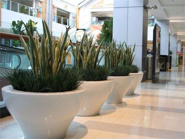 fibreglass white tapered planter