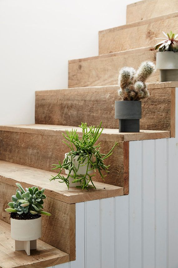 small flower pots on wooden stairs