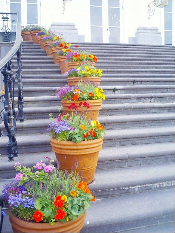small terracota pots on steps