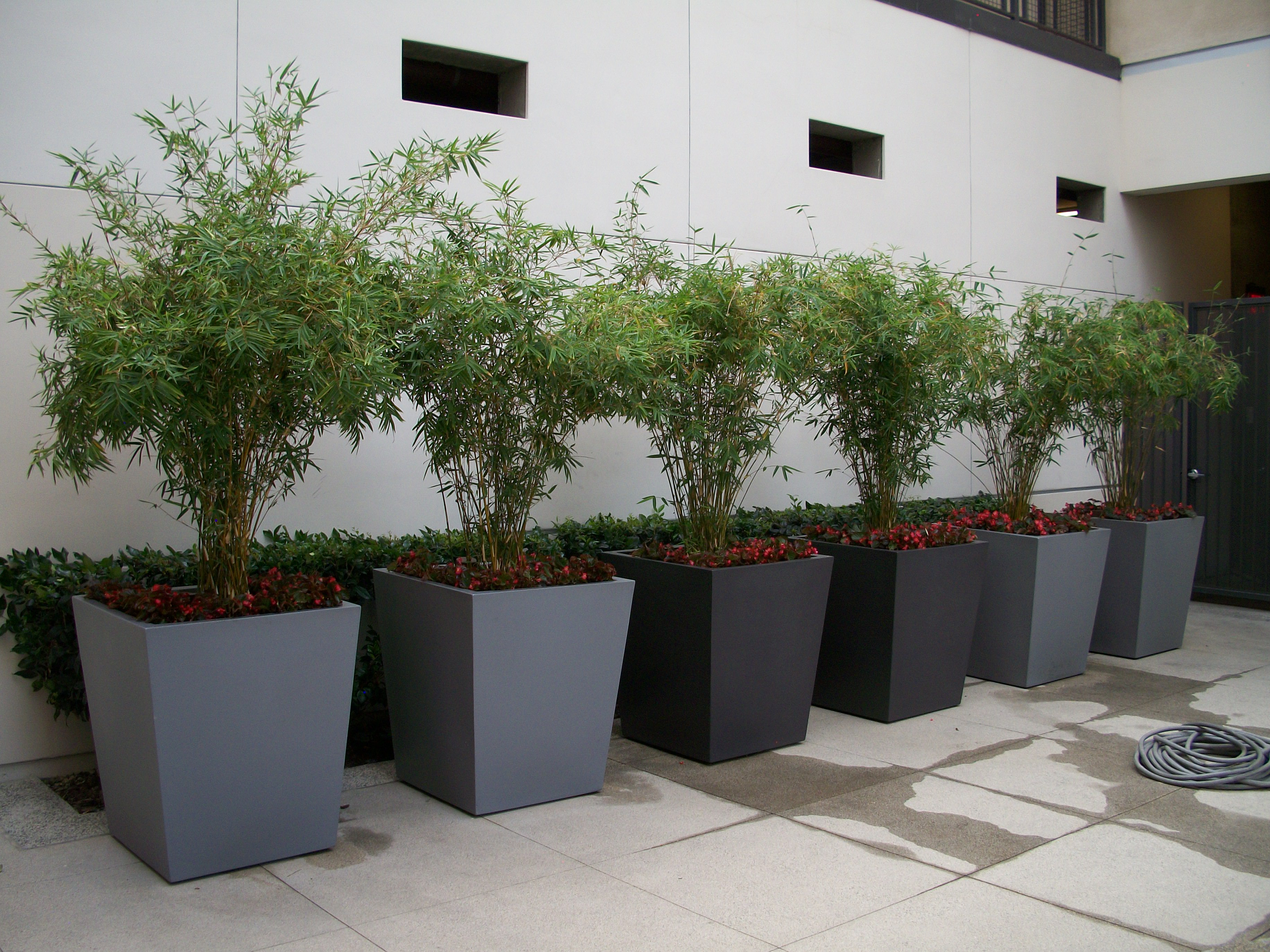10 architectural planters award winning contemporary for Design indoor plant pots uk