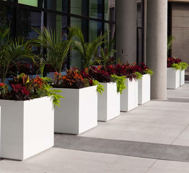 white cube architectural planters