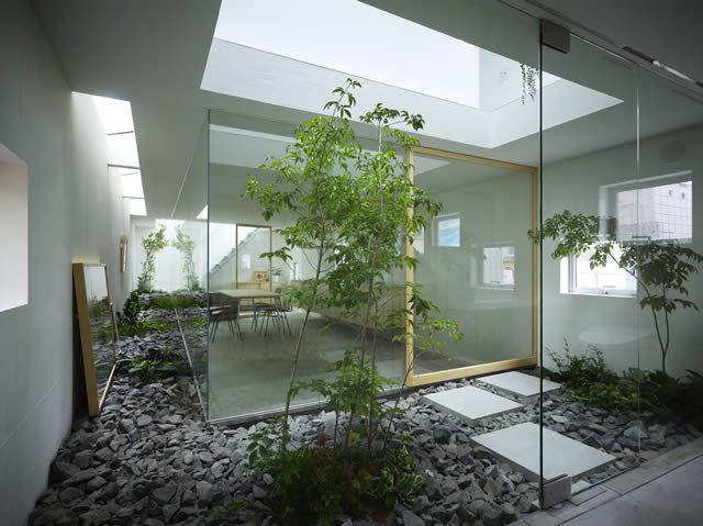 Contemporary interior landscape design