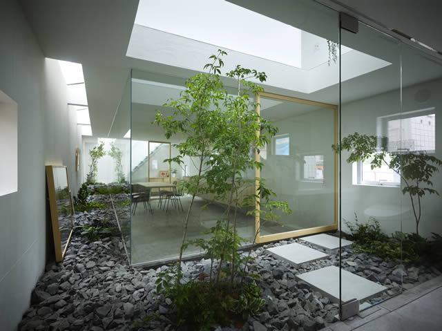 Contemporary interior landscape design