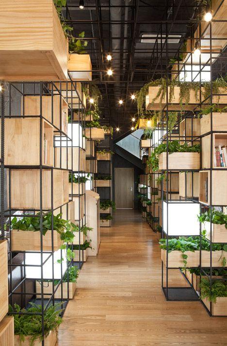 Rectangular planters on rack
