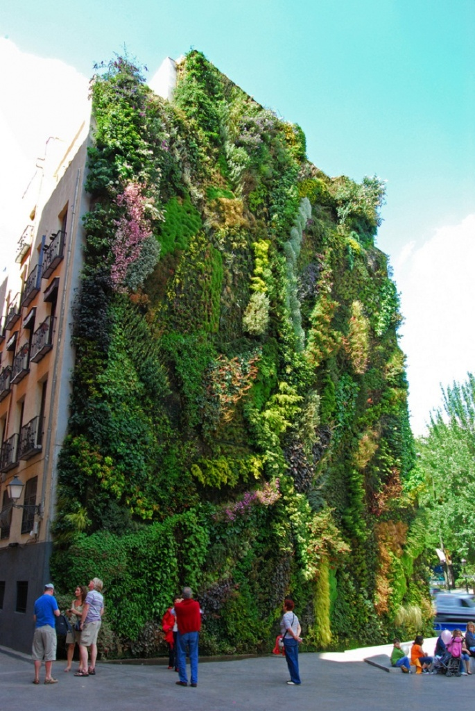 Wall garden on 5 storey building