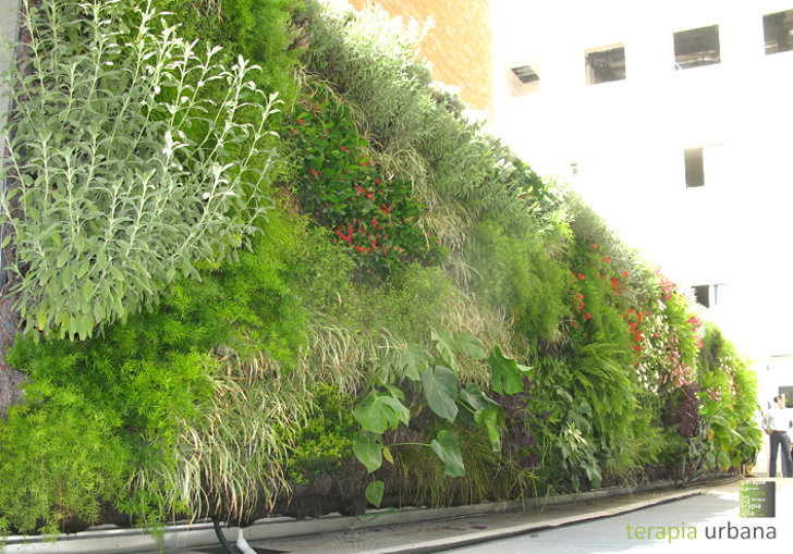 huge vertical garden outside