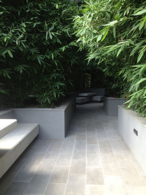 simple shaded garden with bamboo corridor