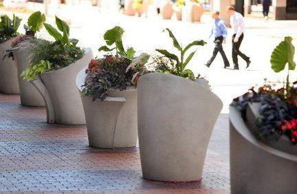 Arched Concrete Planters