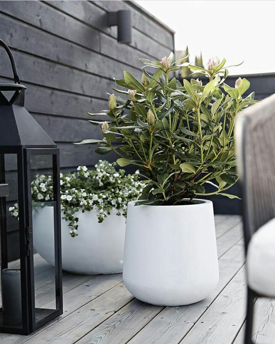 10 Large Planters For The Garden Award Winning Contemporary